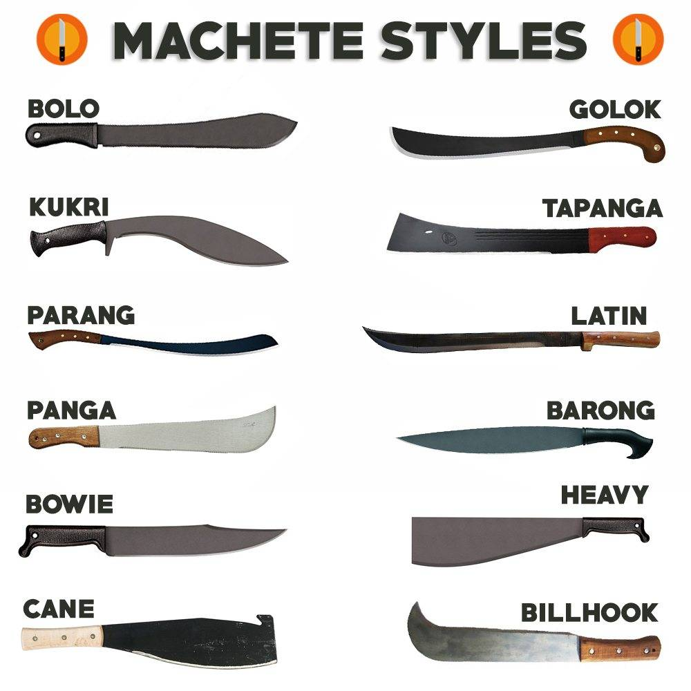 List Of Synonyms And Antonyms Of The Word Machete Shapes